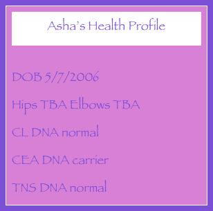 Asha's Health Profile  DOB 5/7/2006 Hips TBA Elbows TBA CL DNA normal CEA DNA carrier TNS DNA normal